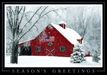 Rustic Elegance Patriotic Holiday Cards